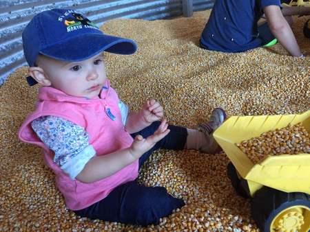 Grain Bin Oct. 16